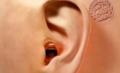 The Evolving Progressive Rock Ear